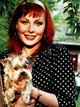 Йоркширский терьер Барсик – любимый пес Натальи Бочкаревой