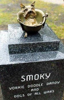 Smoky была первой собакой терапевтом