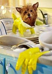Эффективное использование посудомоечной машины
